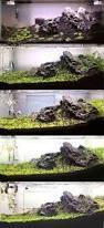 Aquascape Tank Aquascaping Driftwood Page Fish Tank Pinterest Driftwood