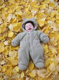 autumn pictures with babies related to baby autumn