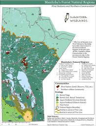 Winnipeg Canada Map by Manitoba Wildlands Manitoba Forests