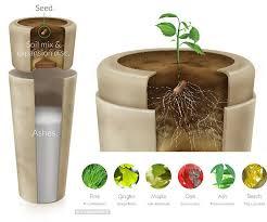 bio urn bio capsules transforming end of into return to