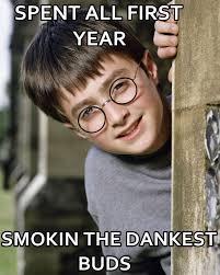 Daniel Radcliffe Meme - daniel radcliffe meme drugs