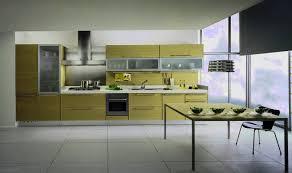 ellegant painted kitchen cabinet doors greenvirals style