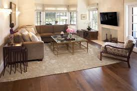 Houzz Living Room Ideas by Houzz Area Rugs Living Room Living Room Design Ideas