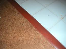 T Shaped Transition Strip by Floor Transition Strips Uk Floor Decorations And Installation