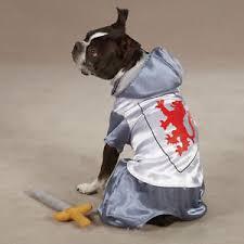 Halloween Dog Costume Halloween Dog Costume Zack U0026 Zoey Knight Dog Pet Costumes Xs