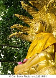 buddha the bodhi tree stock images search stock photos