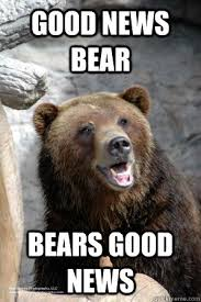 Good News Meme - good news bear bears good news good news bear quickmeme