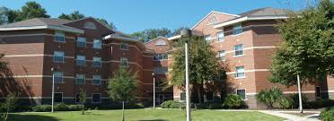 springs complex uf housing wheregatorslive