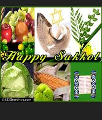 prefab sukkah 16 best sukkot images on israel high holidays and