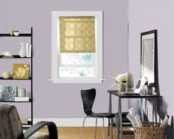 wall color sherwin williams u0027 grape mist dressing room closet