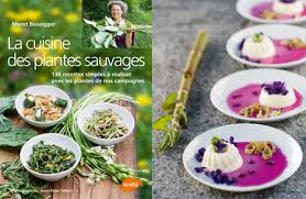 cuisine plantes sauvages recettes de cuisine aux plantes sauvages