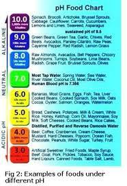 287 best alkaline diet for health images on pinterest healthy