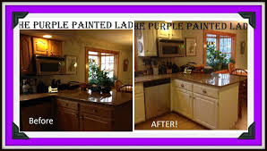 Painted Cabinet Ideas Kitchen Brown Painted Kitchen Cabinets Before And After Caruba Info