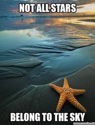 Starfish Meme - all stars belong to the sky