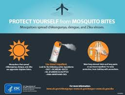 Alabama travel services images Zika confirmed in alabama mosquito linked to virus found along jpg