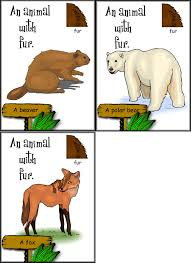 animal parts flashcards for science and esl