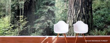 forest murals forest scene wallpaper murals your way forest wall murals woods wallpaper