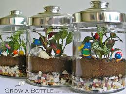 terrarium ideas and inspiration easy diy ideas for indoor gardens
