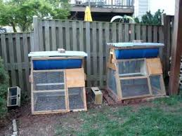 How To Make A Top Bar Beehive Package Bees Installed In Barrel Top Bar Hive Chicken Coop Youtube