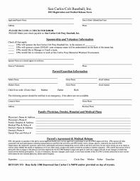 resume worksheet template hazard analysis worksheet inspirational resume worksheet
