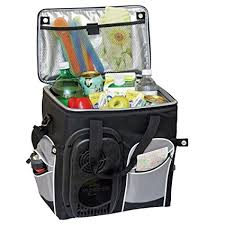 travel cooler images Koolatron 26 quart soft sided electric travel cooler jpg
