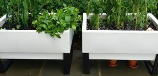 how a self watering pot can change your plants u0027 life for the