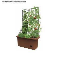 vegetable planter ebay
