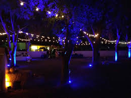 Outdoor Up Lighting For Trees Outdoor Uplighting Outdoor Tent String Cafe Lighting At Magnolia