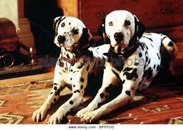 101 dalmatians film stock photos u0026 101 dalmatians film stock