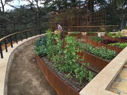 projects heart beet gardening