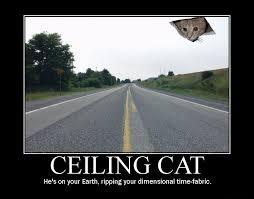 Ceiling Cat Meme - ceiling cat know your meme