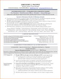 ceo resume example change management analyst cover letter new posts