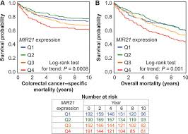 microrna mir21 mir 21 and ptgs2 expression in colorectal cancer