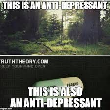 Antidepressant Meme - this is an antidepressant a rebuttal