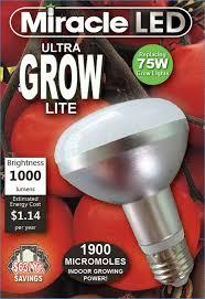 Cheap Led Grow Lights For Weed Best 25 Led Grow Light Bulbs Ideas On Pinterest Grow Lights