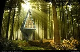 single pole house tree house