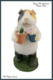 piggy the gardener 9 50 a lovely ornament of a guinea pig with