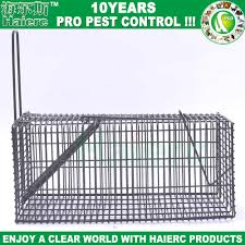 Cheap Rat Cage Rodent Lab Cage Rodent Lab Cage Suppliers And Manufacturers At