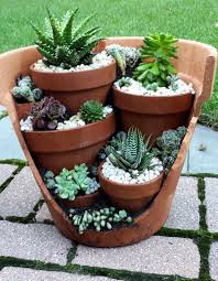 succulent planters for sale step by step guide for diy cactus gardeners step guide cacti