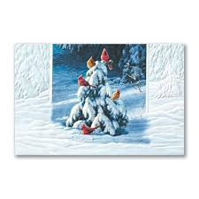 pumpernickel press boxed christmas cards 28 best cardinal christmas cards images on cardinals