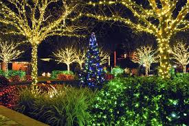 Botanical Gardens Christmas Lights by It U0027s Beginning To Look A Lot Like