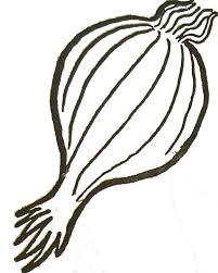 coloriage légume oignon