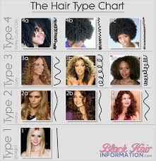 4d hair hair type classification
