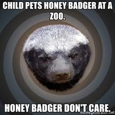 Honeybadger Meme - child pets honey badger at a zoo honey badger don t care