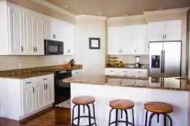 pro kitchen cabinets home decoration ideas