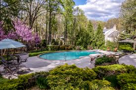 owning a backyard pool yes or no whit harvey