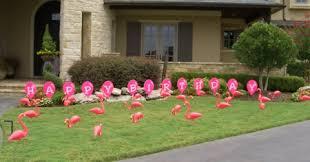yard announcements lawn signs yard cards flamingos