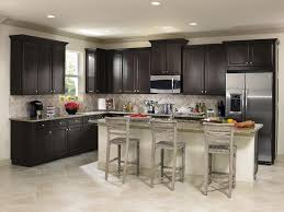Kitchen Cabinet Brand Reviews Kitchen Pretty Kitchen Decor With Aristokraft Cabinetry Design