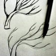 sketching plum trees archinodes