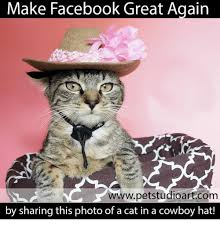How To Make A Facebook Meme - make facebook great again wwwpetstudioartcom by sharing this photo